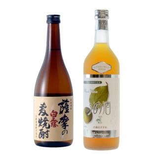 薩摩の麦焼酎・ヒアルロン酸入りおすすめうめ酒